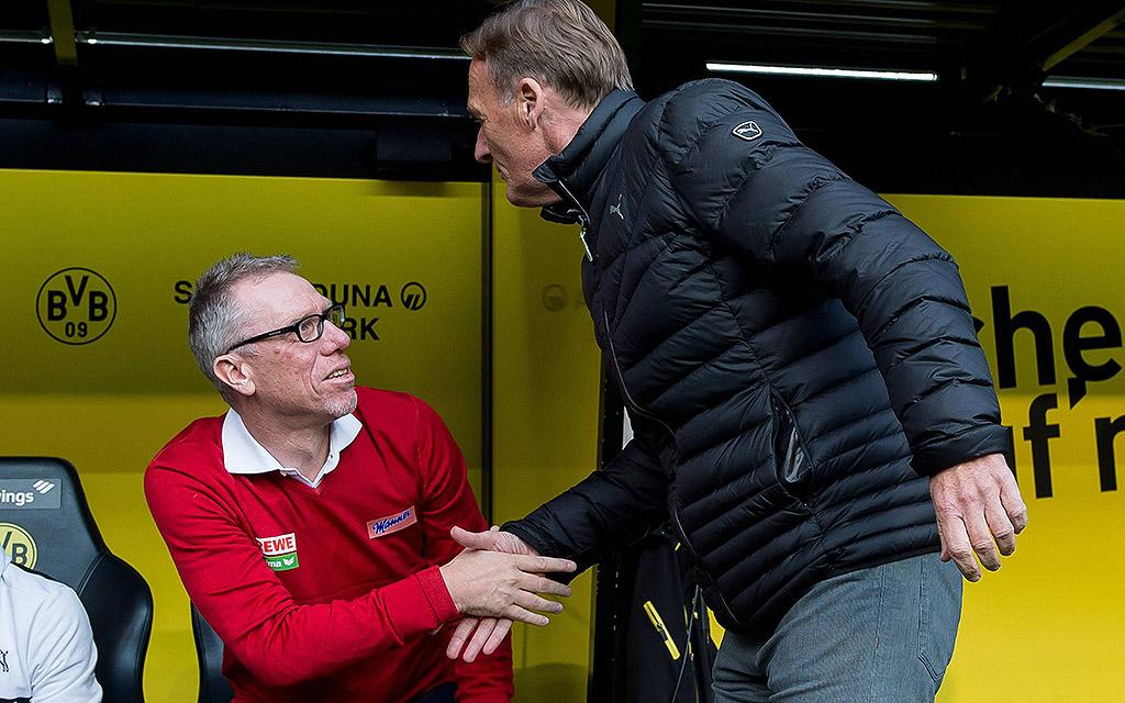 Gegen Mainz auf der Bank des BVB: Peter Stöger