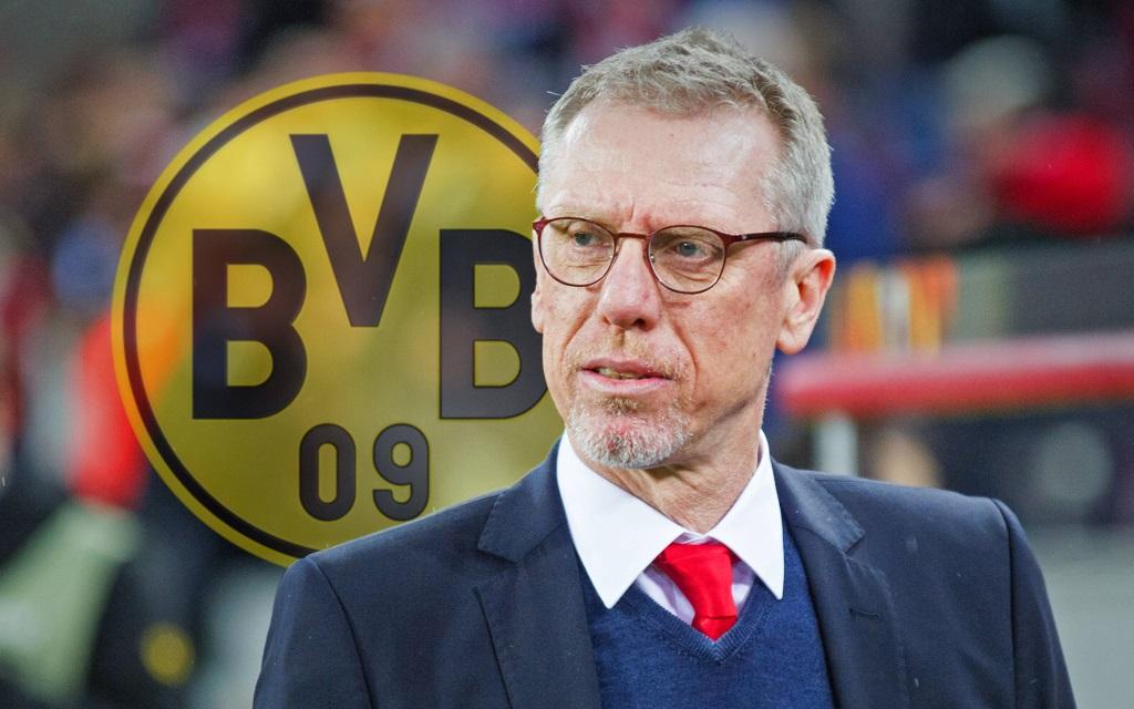 Peter Stöger begann die Saison in Köln. Jetzt trainiert er Borussia Dortmund.