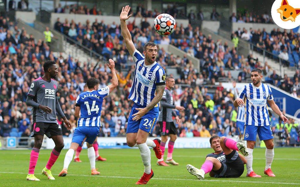 Der Quotenfuchs in der Premier League beim Heimspiel von Brighton & Hove Albion.